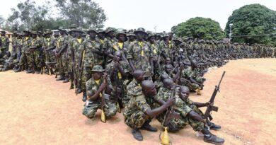 Boko Haram morduje 15 osób w ataku na konwój urzędników stanu Borno