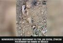 Dziewczynka uratowana po tym jak żywcem pochowano ją na polu!