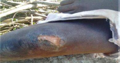 Uganda: rodzina zaatakowanego pastora ponownie pobita przez okolicznych muzułmanów