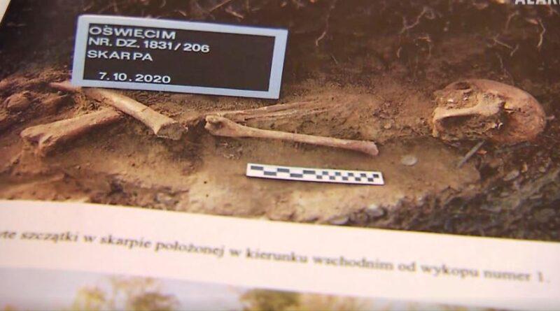 Rzeka w Oświęcimiu wyrzuciła dziesiątki kości i czaszek